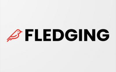 $1.1 million capital round sets Bronze Valley portfolio company Fledging on path for continued growth